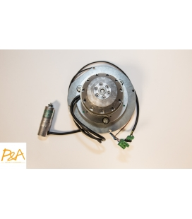 Extracteur de fumées RIKA 111475